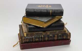 Эссе на свободную тему о роли литературы. Литература — песнь души Литература выпрямляет душу эссе
