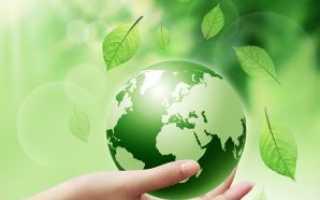 Квн по экологическому воспитанию в доу. КВН по экологии в детском саду для подготовительной группы «Шумит зеленый лес
