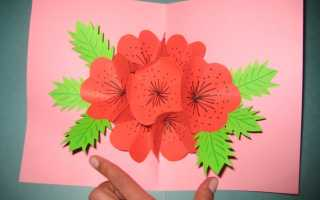 Открытки в форме цветов. Как сделать открытку на день рождения. Открытки бывают разные…