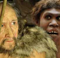 Кроманьонец и современный человек. Наши предки кроманьонцы, а чьи же — неандертальцы