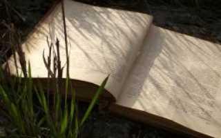 Сочинение: «Тема человека и природы в литературе».  человек и природа в художественных произведениях