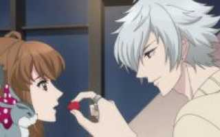 Конфликт братьев все персонажи. Brothers Conflict («Конфликт братьев»): персонажи аниме, их биографии, характеристики