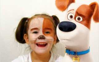 Костюм собаки на новый год для взрослого. Новогодние костюм и маска собаки для детей своими руками: мастер-классы с выкройками, шаблонами и схемами. Интернет идеи костюма