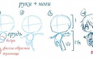 Как нарисовать в стиле чиби. Как нарисовать чиби? Чиби — любимый персонаж