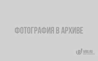 Теракт в театре на дубровке. Сколько было террористов и сколько погибло заложников? Решения еспч по искам пострадавших