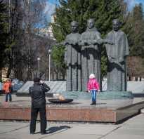 Народные названия памятников в россии. Холодильник с бородой
