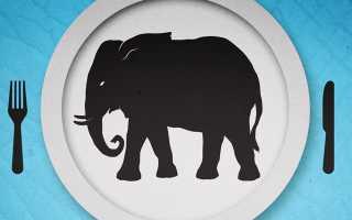 Съесть слона по кусочкам или как сделать реальностью загаданное в новогоднюю ночь. Как съесть слона (достижение цели)