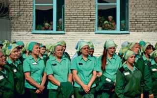 Масса женщин: антиутопия. Существуют ли сексуальные издевательства в женских тюрьмах России? Вся правда о суровых порядках в колониях