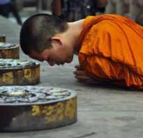Буддизм предполагает. Путь практики и саморазвития, или во что верят буддисты
