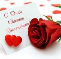 Что обозначает день влюбленных. День святого Валентина: история возникновения праздника