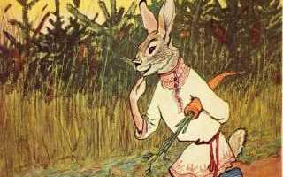 Характеристика зайца в русских народных сказках. Животные в русских народных сказках