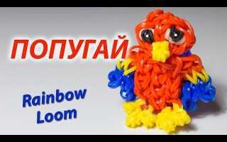 Как сделать из резинок попугая. Как сплести из резинок попугая: интересная игрушка, которая понравится всем. Как сплести из резинок попугая: поэтапный разбор урока