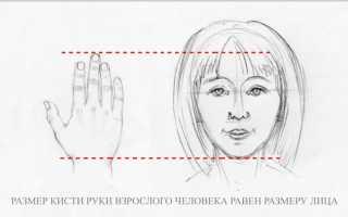 Детские рисунки рук в кулак. Основы анатомии человека: как рисовать руки