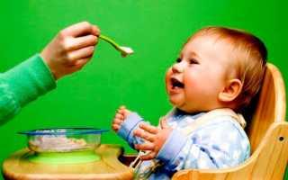 Когда можно подкармливать ребенка искусственника. Введение прикорма при искусственном вскармливании