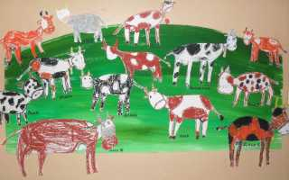 Учимся рисовать корову поэтапно. Как нарисовать корову — пошаговая инструкция с фотографиями Коровка рисунок для детей