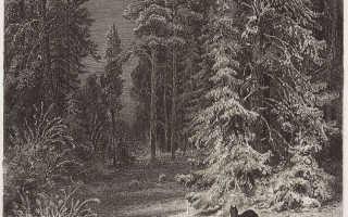Зимние пейзажи шишкина с названиями. Иван шишкин