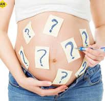 Можно ли определить беременность на раннем сроке без теста и как понять, беременна или нет? Главные признаки беременности. Физиологические симптомы беременности