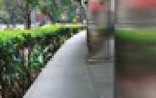 Традиции и обычаи сингапура. Колорит сингапура — традиции, фестивали и менталитет местных жителей
