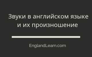 Английские согласные буквы — Сonsonants. Правила чтения в английском языке согласных