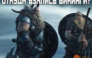 Рассказы про викингов. Разграбление «святых мест»