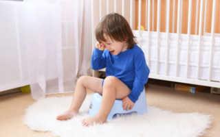 Почему ребенок резко перестал ходить на горшок. Главный стимул просится на горшок − когда стоит решительно отказаться от памперсов? Причины почему ребенок не просится на горшок