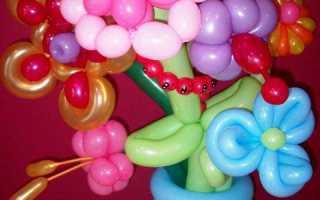 Цветы из воздушных шаров как делать. Цветы из шаров своими руками — основы аэродизайна