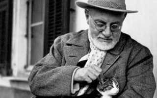 Анри матисс биография и картины. Анри Матисс Matisse, Henri