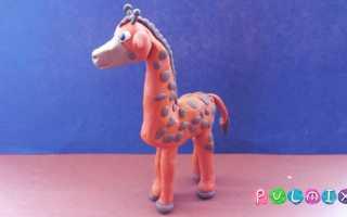 Жираф из пластилина своими руками. Как слепить жирафа из пластилина своими руками поэтапно. Как сделать жирафа из пластилина пошагово
