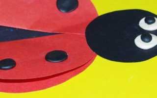 Модульная аппликация из бумаги шаблоны. Аппликация из цветной бумаги: круг. Техника объемной аппликации. Аппликация из кусочков бумаги