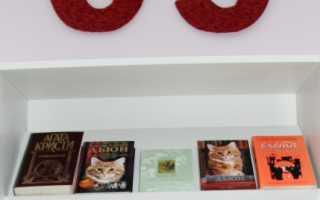 Библиотека и библиотекарь в художественной литературе. Образ библиотекаря… и книги…