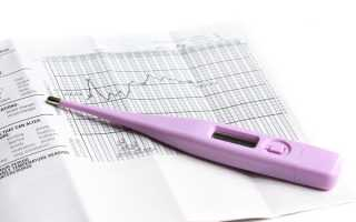 Как измерить базальную температуру для определения овуляции и беременности? Узнайте, как правильно измерять базальную температуру. Особенности измерения базальной температуры
