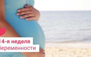 Ощущение в животе на 14 неделе беременности. Возможные отклонения от нормы, угроза выкидыша. Медицинские рекомендации и советы по образу жизни будущей мамы на данном сроке