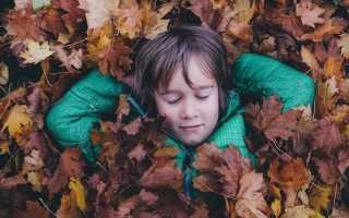 Куда отправить ребенка на осенние каникулы. Семь идей для осенних каникул: куда отправить ребенка, чтобы он провел отдых с пользой. Творческие мастерские Винзавода