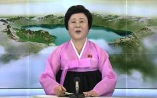 «я словно загипнотизирован». почему на западе очарованы женщиной в розовом, сообщающей о ядерных успехах кндр