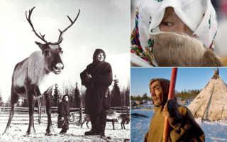 Народы ханты и манси: хозяева рек, тайги и тундры поклонялись медведям и лосям. Ханты и манси: самые шокирующие факты