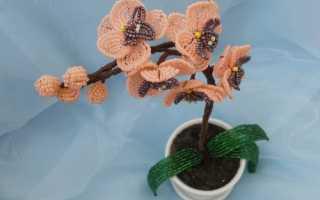 Плетение бисером орхидеи пошагово из сиреневого цвета. «Orchid Bead» Орхидея из бисера