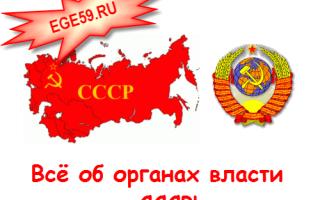 Ленин годы правления ссср. От Ленина до Путина: чем и как болели российские лидеры