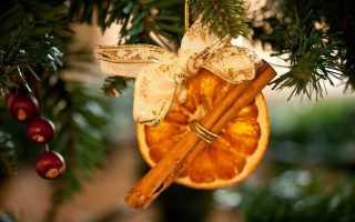 Елка из цитрусовых. Как сделать апельсиновую елочную игрушку своими руками? Елочка из сушеных долек апельсина или грейпфрута своими руками