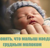 Как понять что грудного ребенка. Как понять, что ваш ребенок наелся грудным молоком. Здоровье – что это? Определение здоровья согласно ВОЗ