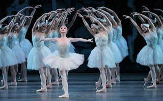 Из чего состоит балет краткое содержание. История возникновения классического балета