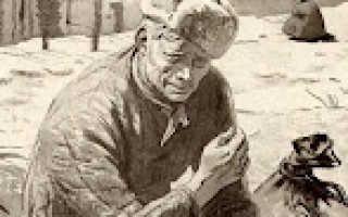 Судьба человека автор и главный герой. Знакомство с Андреем Соколовым, у которого был реальный прототип