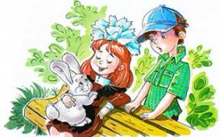 Шутливые детские рассказы. Весёлые смешные рассказы для детей