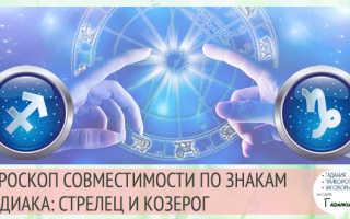 Стрелец и Козерог: совместимость мужчины и женщины в любовных отношениях, браке и дружбе. Козерог и стрелец совместимость